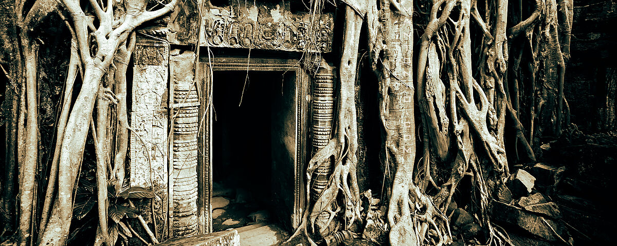 Ta-Prohm-Tempel, Kambodscha. Bild: Sam Antonio. Lizenz: http://creativecommons.org/licenses/by-nc/2.0/legalcode